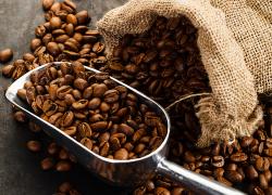 Coffee+Beans+in+Bulk